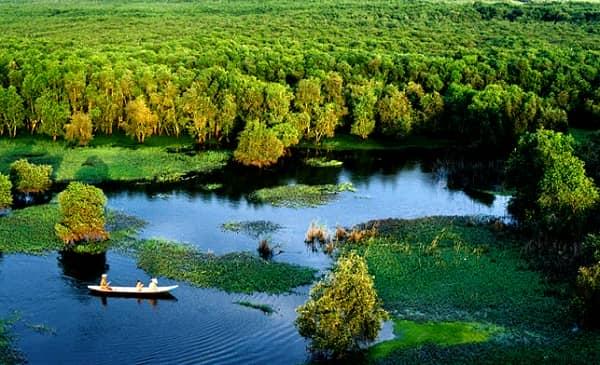 Rừng tràm Trà Sư thu hút khách bởi vẻ đẹp thiên nhiên đầy bí ẩn