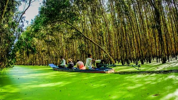 Thời điểm lý tưởng nhất để du lịch An Giang là từ tháng 7 đến tháng 10 âm lịch