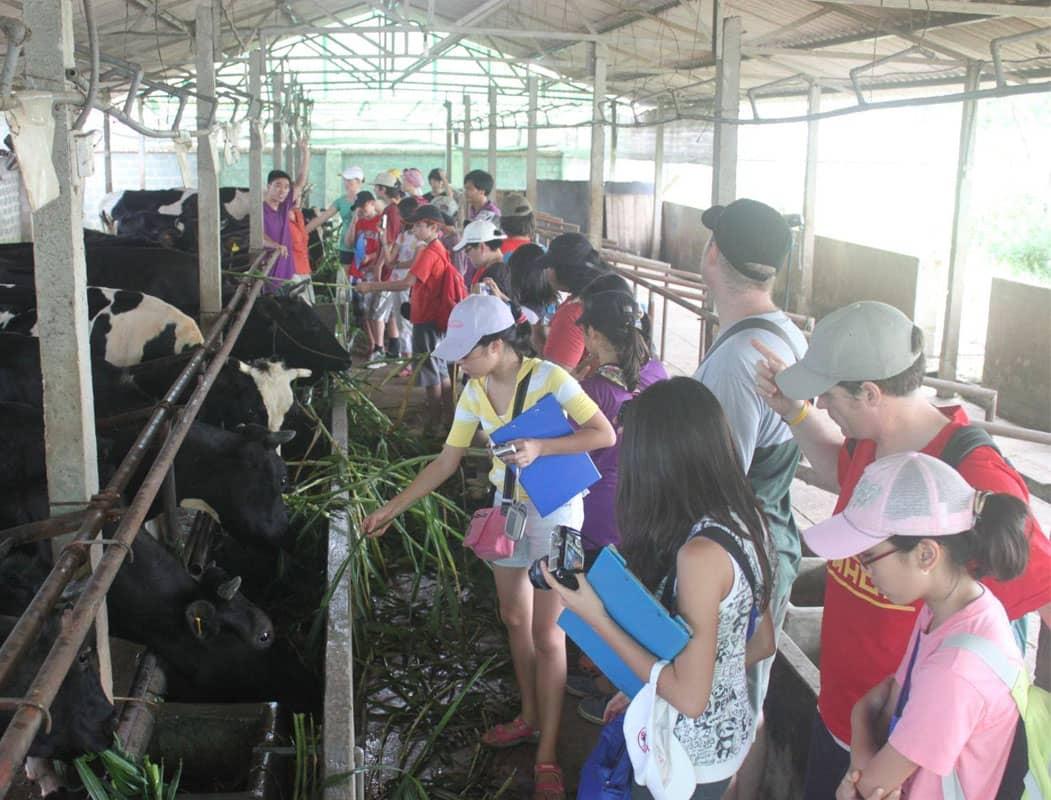 Các bạn nhỏ bị mê hoặc với mô hình du lịch nông nghiệp