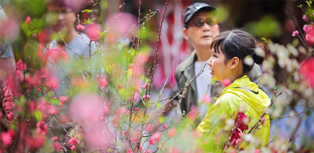 Chợ hoa Tết ở Hà Nội