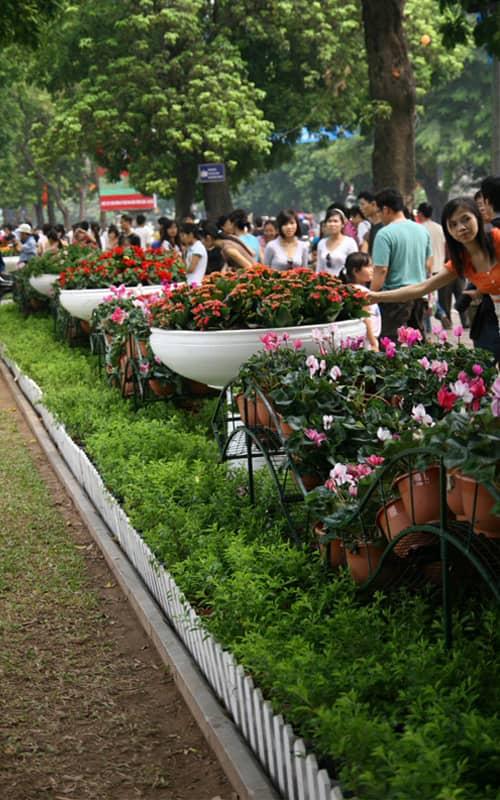 Hội chợ hoa tết Hà Nội là hoạt động thường niên được tổ chức tại Hồ Gươm và phố đi bộ