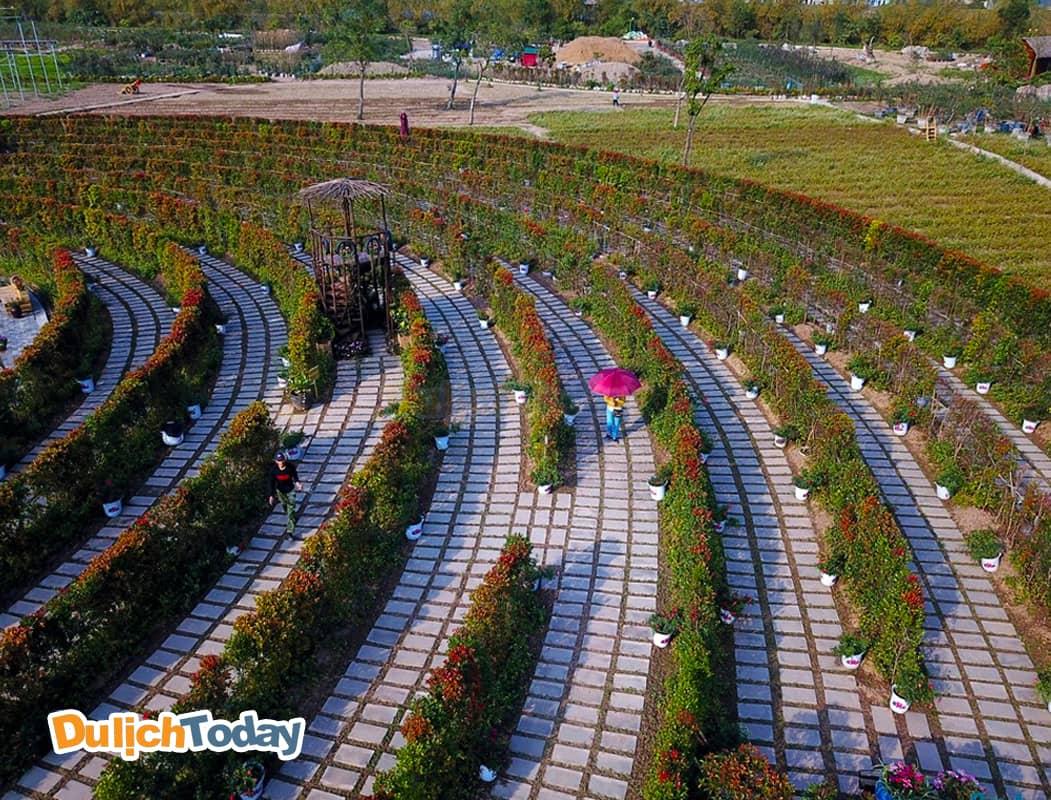 Công viên hoa hồng thạch bàn