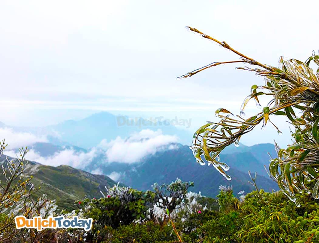 Đỉnh Putaleng là giấc mơ chung của những kẻ đam mê trekking