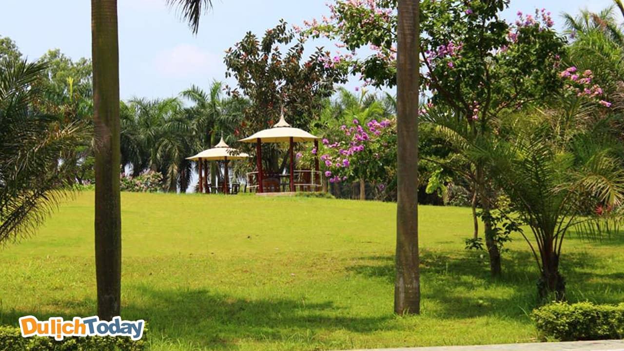 Nhà hàng Lộc Vừng có khu bãi rộng để tổ chức sự kiện, cắm trại, teambuilding ngoài trời.