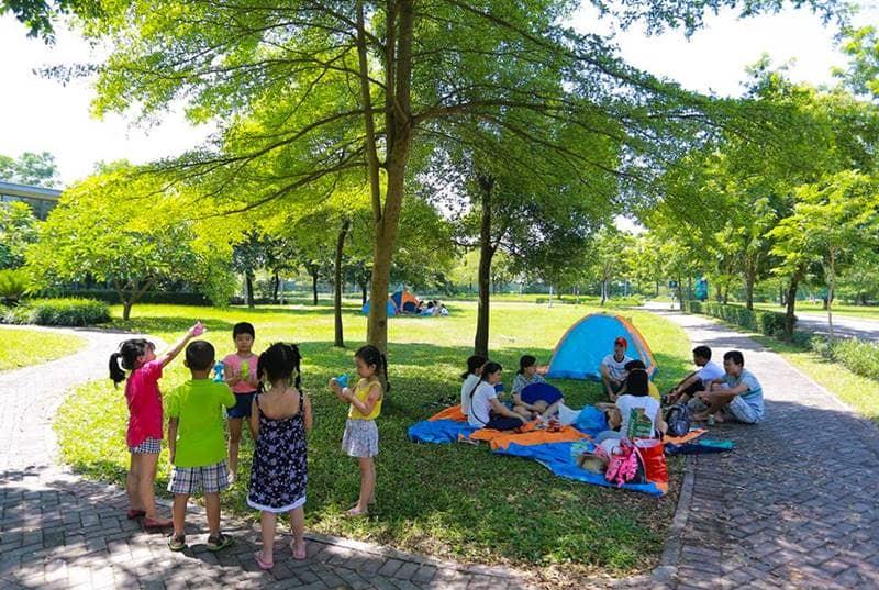 Cắm trại dã ngoại trong không gian xanh