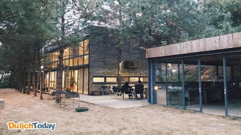 Hidden Villa - Homestay giữa rừng thông