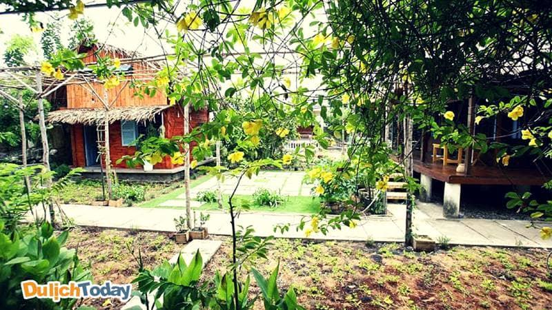 Không gian xanh mát tại Bạch Cúc Homestay luôn thích hợp cho các gia đình yêu thiên nhiên