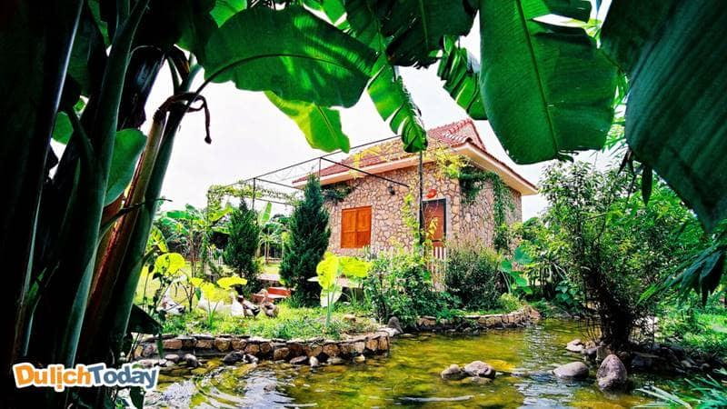 VResort là resort quanh Hà Nội có cảnh quan nên thơ, có chút hoang dại hứa hẹn sẽ đem đến nhiều cảm nhận ấn tượng trong lòng du khách.