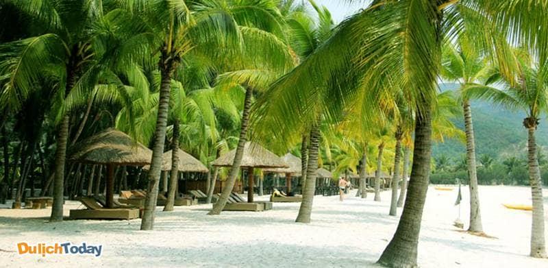 Khung cảnh rợp bóng cây xanh đậm chất miền biển nhiệt đới