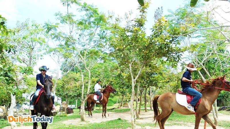 Rất đông du khách cưỡi ngựa tại khu du lịch sinh thái Hồ Mây