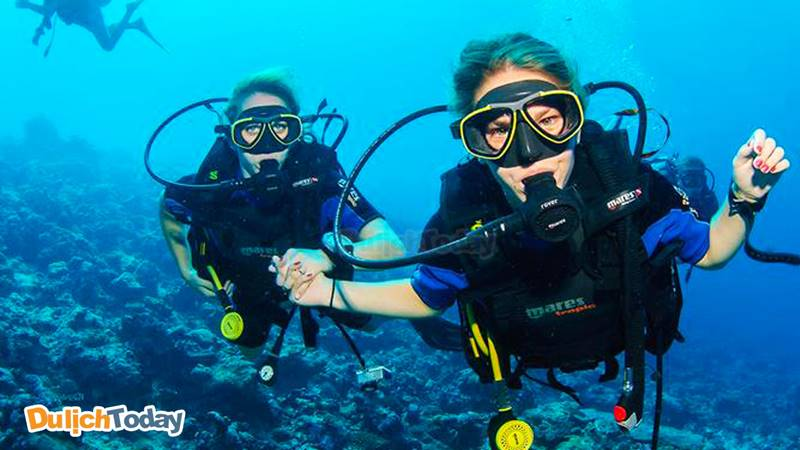 Try dive là hình thức lặn thử với bình oxi dành cho những người mới bắt đầu