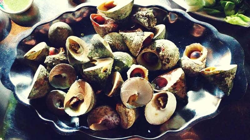 Ốc Vú Nàng luộc lên khá dễ ăn vẫn giữ được hương vị tươi ngon của ốc biển