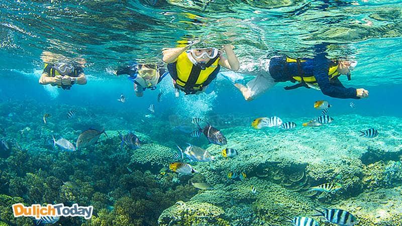 Địa điểm lặn ở Hòn Một thích hợp cho du khách lặn bằng ống thở