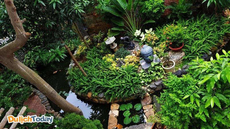 Khuôn viên vườn cây đẹp mắt của biệt thự