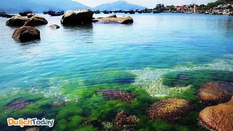 Đảo Bình Hưng với bãi biển thoai thoải, không sâu và làn nước trong nên dễ dàng nhìn thấy san hô dưới nước