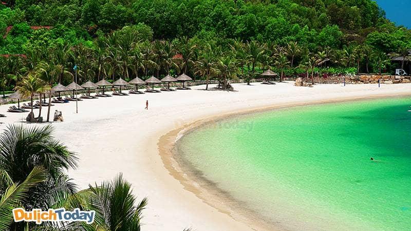Bãi biển cát trắng, nước trong xanh và hàng dừa xanh mướt