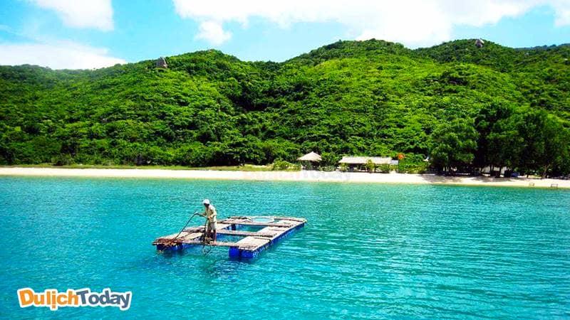 Vịnh Vân Phong cách thành phố 40km, gây ấn tượng bởi thảm thực vật xanh mướt và nước biển xanh ngọc