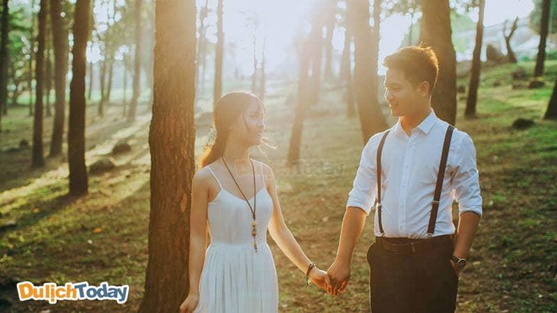 Đồi thông Ba Vì - Địa điểm du lịch gần Hà Nội cho các cặp đôi