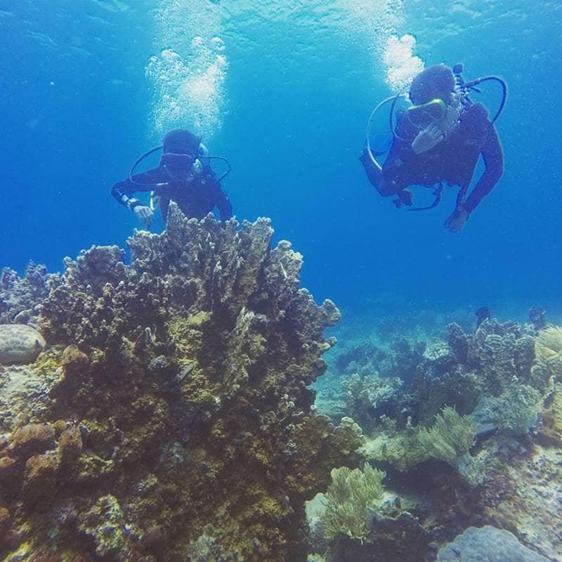 Hành động vì đại dương