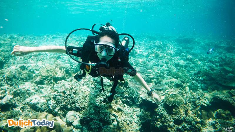 Thời điểm thích hợp nhất đi lặn biển Hòn Mun là từ tháng 6 - tháng 8