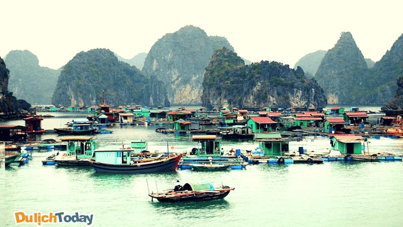 Làng chài Vung Viêng, Vịnh Hạ Long