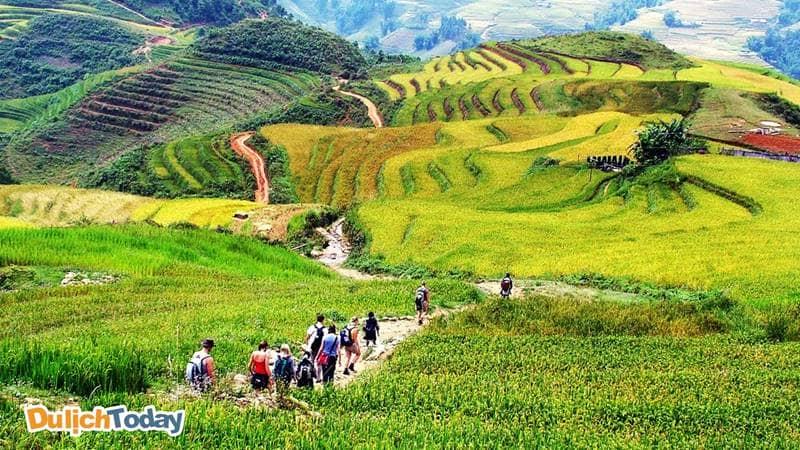 Trekking sapa tháng 10 là hoạt động được nhiều du khách chọn trải nghiệm