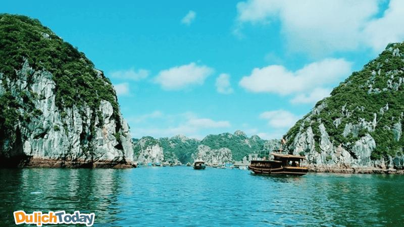 Rừng đảo đá muôn hình vạn trạng tại khu vực vịnh Cát Bà