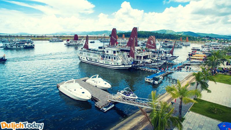 Địa điểm mua vé uy tín nhất là nhà ga cảng tàu khách quốc tế Tuần Châu
