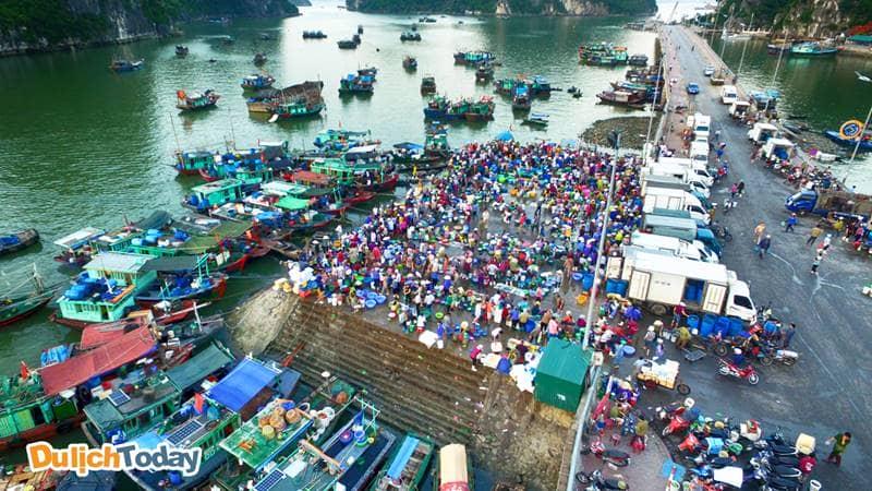 Chợ cá sớm Hạ Long là đầu mối hải sản lớn nhất thành phố