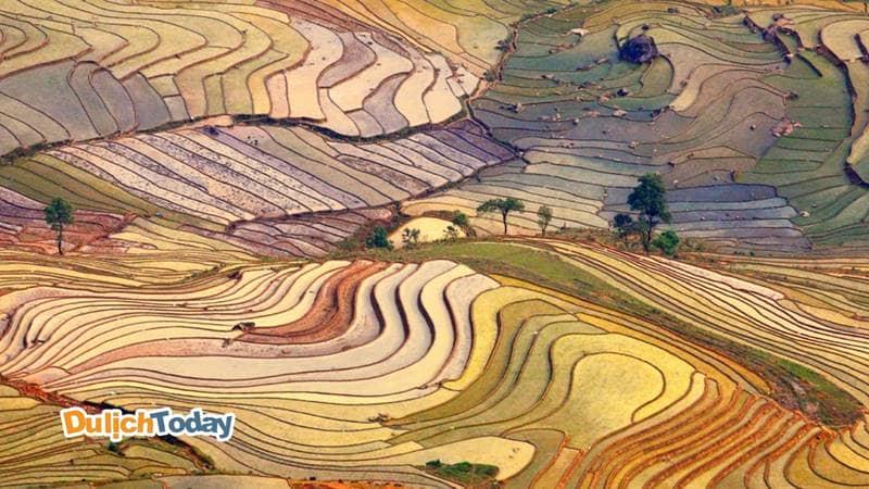 Thung lũng hiện lên với nhiều mảng màu đa dạng khi nước tràn trên các thửa ruộng bậc thang ở Sapa