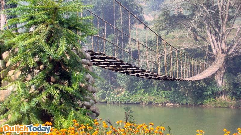 Cầu Mây bắc qua suối Mường Hoa thơ mộng