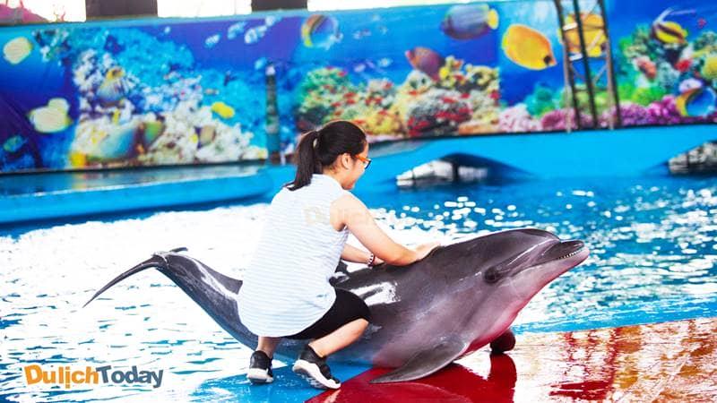 Khán giả nhỏ tuổi giao lưu với cá heo tại buổi trình diễn ở Tuần Châu