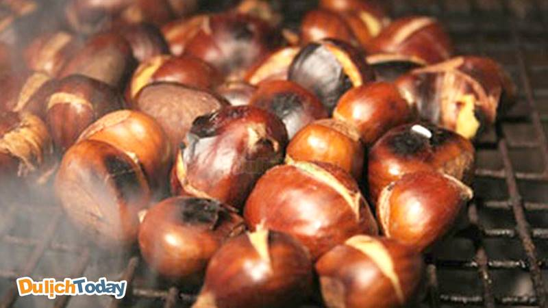 Hạt dẻ Sapa tháng 11 mang hương vị thật khác biệt