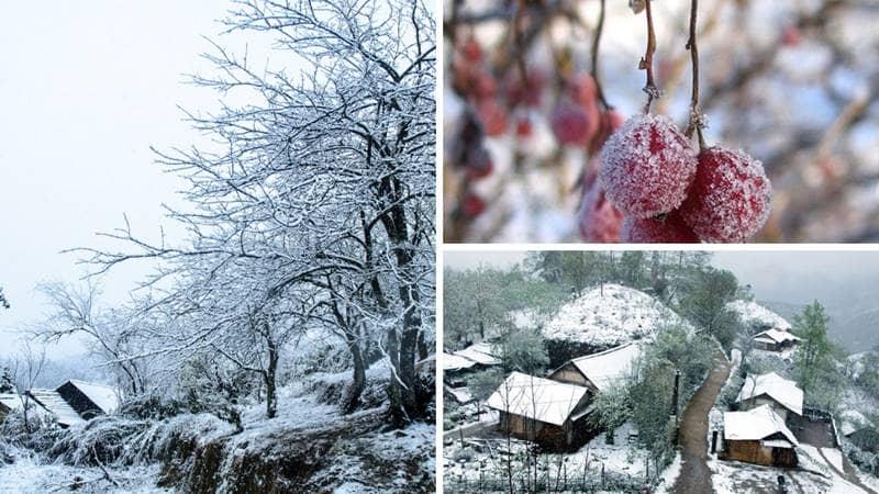 Cảnh đẹp Sapa mùa đông - tuyết phủ