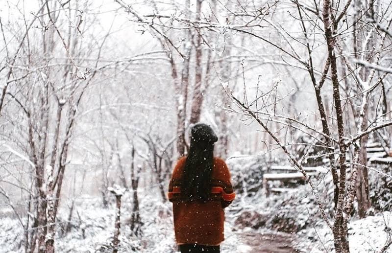 Ngắm nhìn cảnh sắc đất trời Sapa chìm trong màu trắng xóa của tuyết phủ ©internet