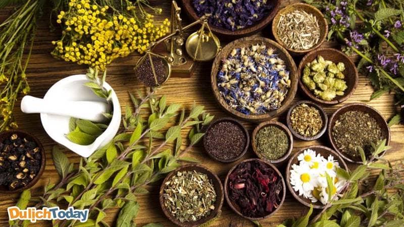 Cúc Hoa chủ yếu chỉ sử dụng các loại dùng lá cây, các loại thảo dược gần gũi chăm sóc sức khỏe cho các vị khách khi đến đây.