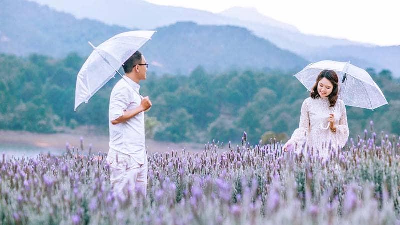 Cặp đôi chụp ảnh cưới tại F cánh đồng hoa. Nguồn: Internet