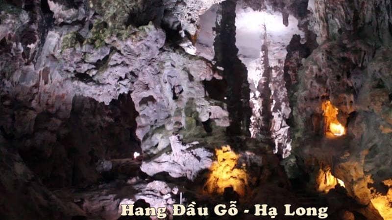 Nhờ có cửa hang lớn mà bên trong hang động rất sáng