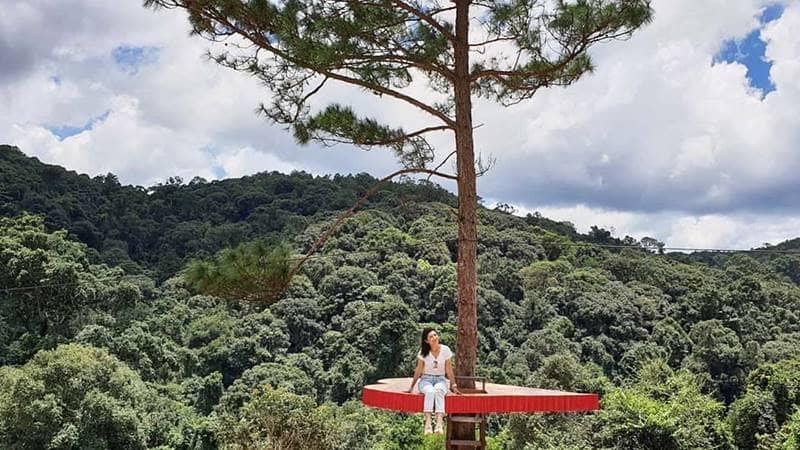 Trái tim đỏ treo giữa thân cây thông ở Hoa Sơn Điền Trang. Nguồn: Internet