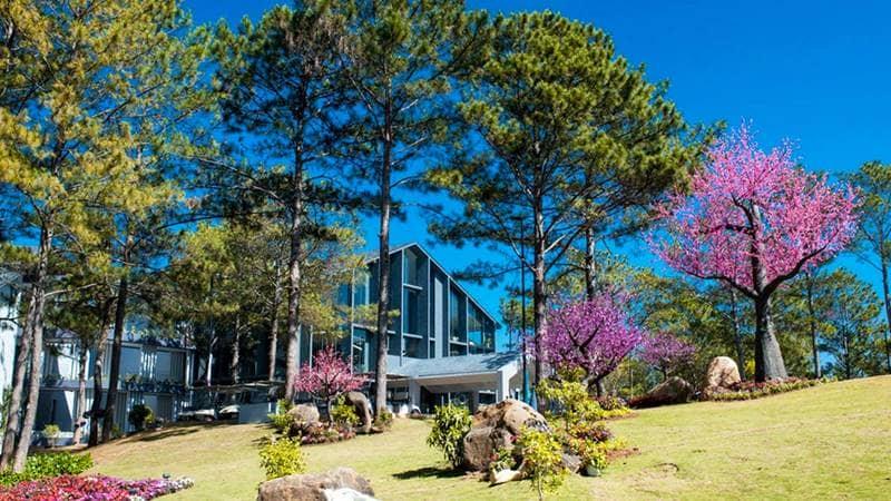 Khu nghỉ dưỡng Terracotta Resort Đà Lạt. Nguồn: Internet