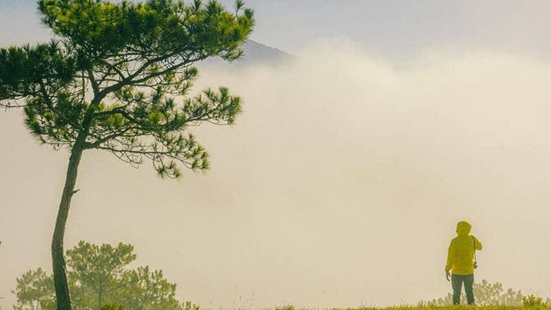 Áo gió sẽ hợp với thời tiết buổi sáng khi bạn đi săn mây