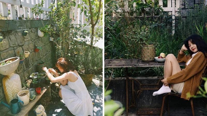 Homestay có cả một khu vườn nhỏ xinh cho những cô nàng yêu thích hoa cỏ