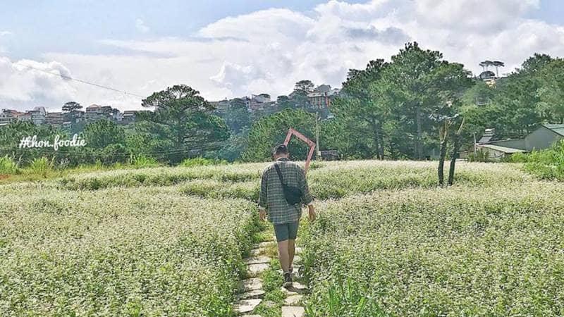Bạn sẽ có những bức hình cực đẹp tại vườn hoa tam giác mạch của The Kupid Hill