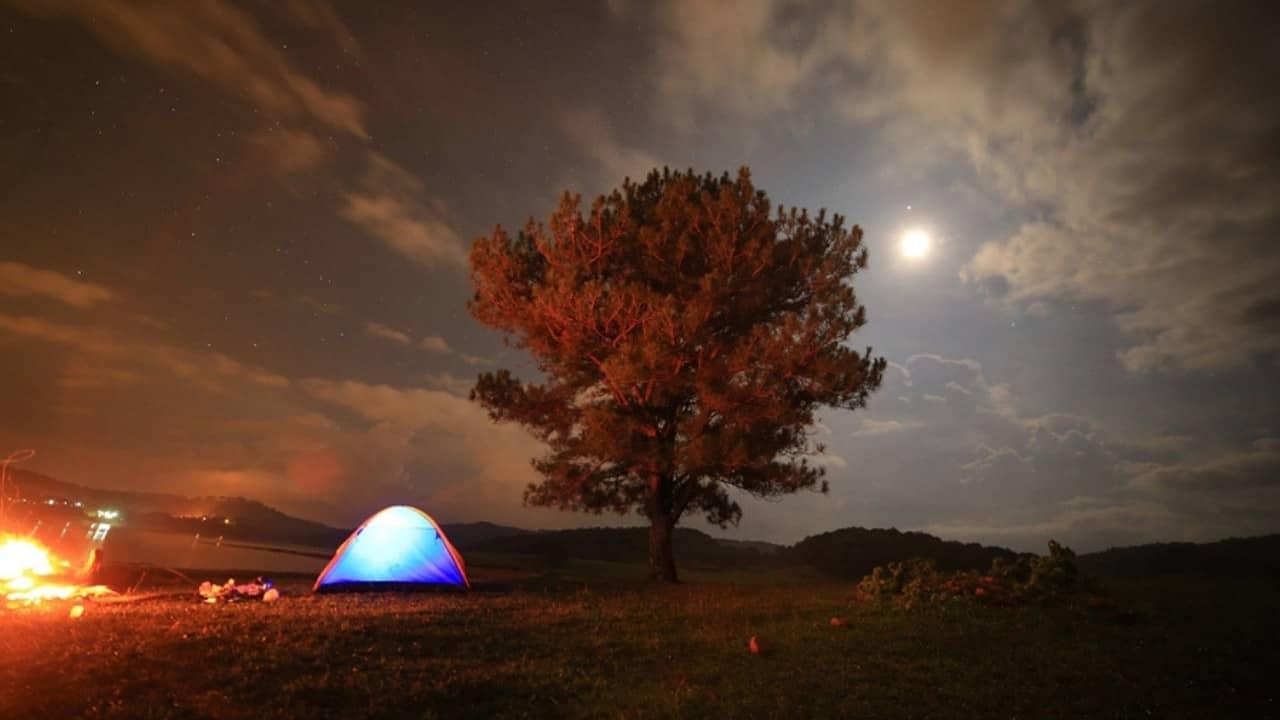 Cắm trại bên cây thông cô đơn - khu vực hồ suối Vàng