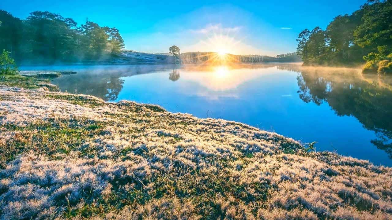Đồi cỏ hồng nằm bên hồ Suối Vàng. Nguồn: Internet