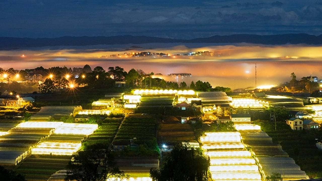 Làng hoa Thái Phiên mang đến cảnh đẹp Đà Lạt về đêm độc đáo. Nguồn: Internet