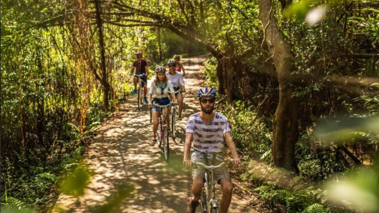 Đạp xe khám phá rừng quốc gia ở đảo Cát Bà. Nguồn: Internet