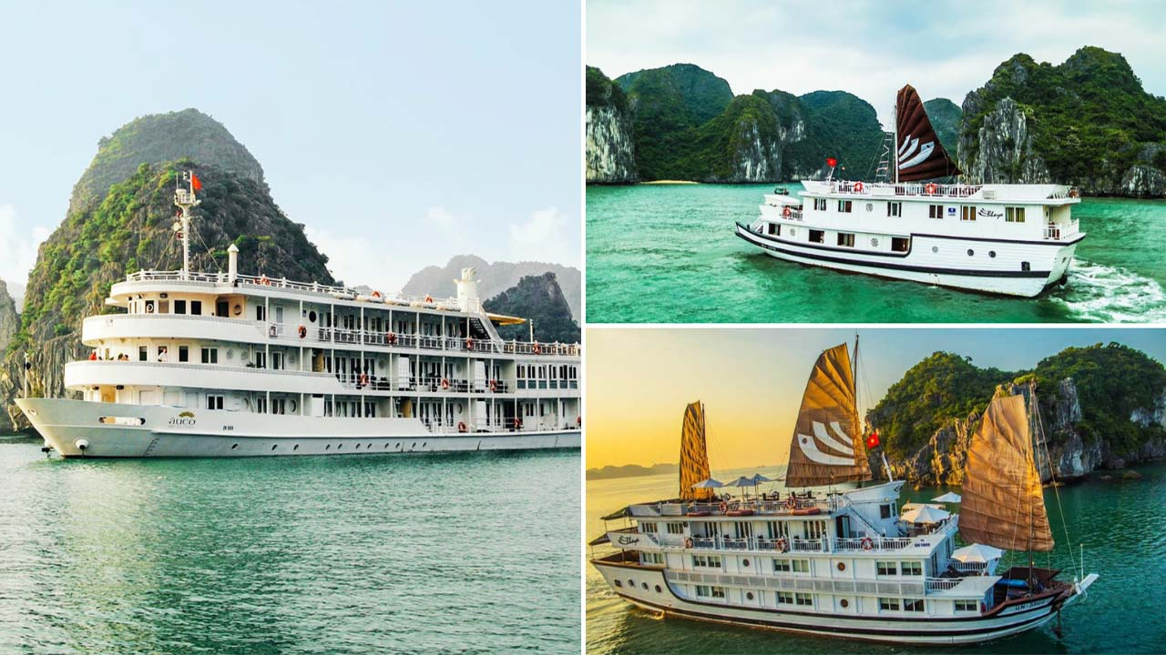Du thuyền Bhaya mang đến nhiều sự lựa chọn dành cho du khách. Nguồn: Internet