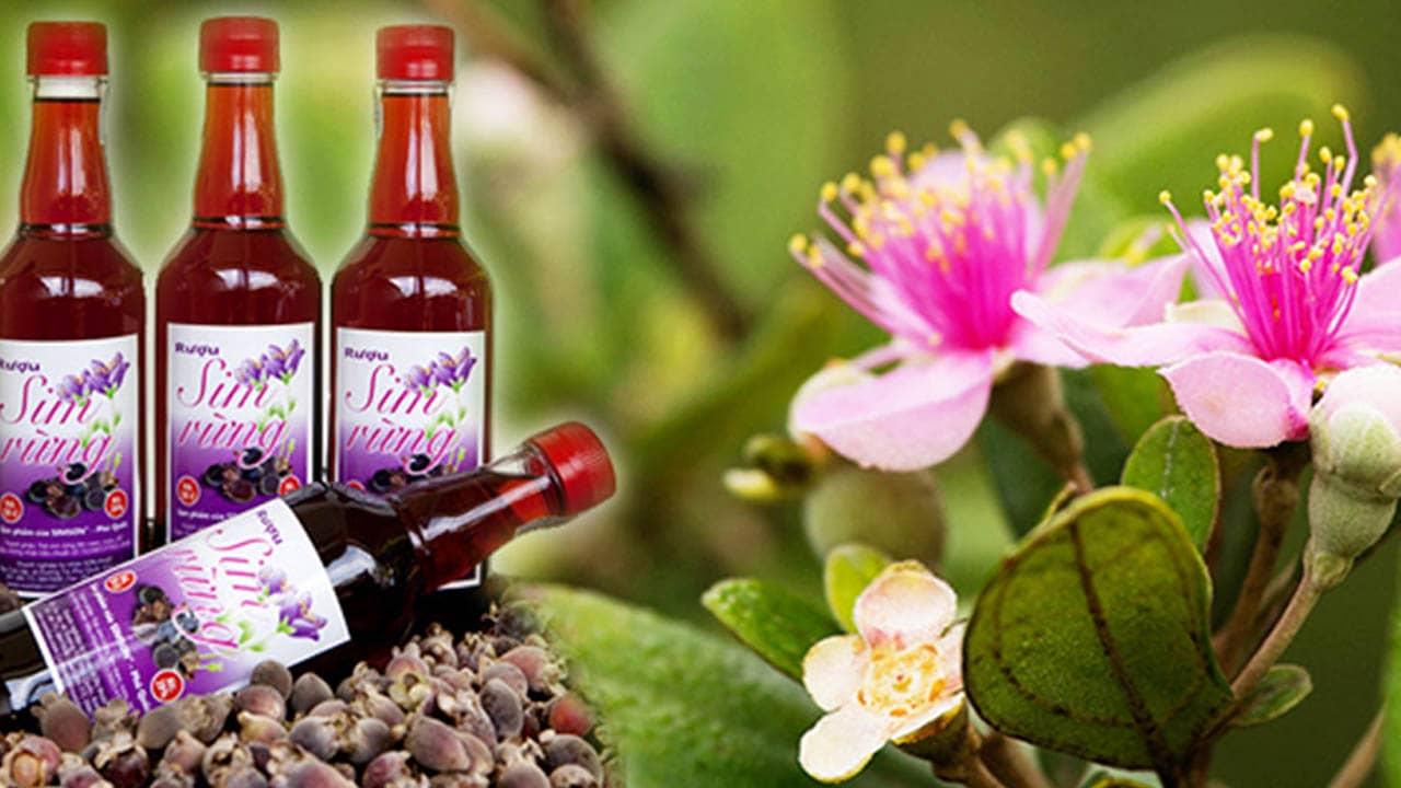 Đặc sản rượu sim Phú Quốc cũng vì thế mà ngon nổi tiếng, được nhiều du khách chọn mua làm quà.