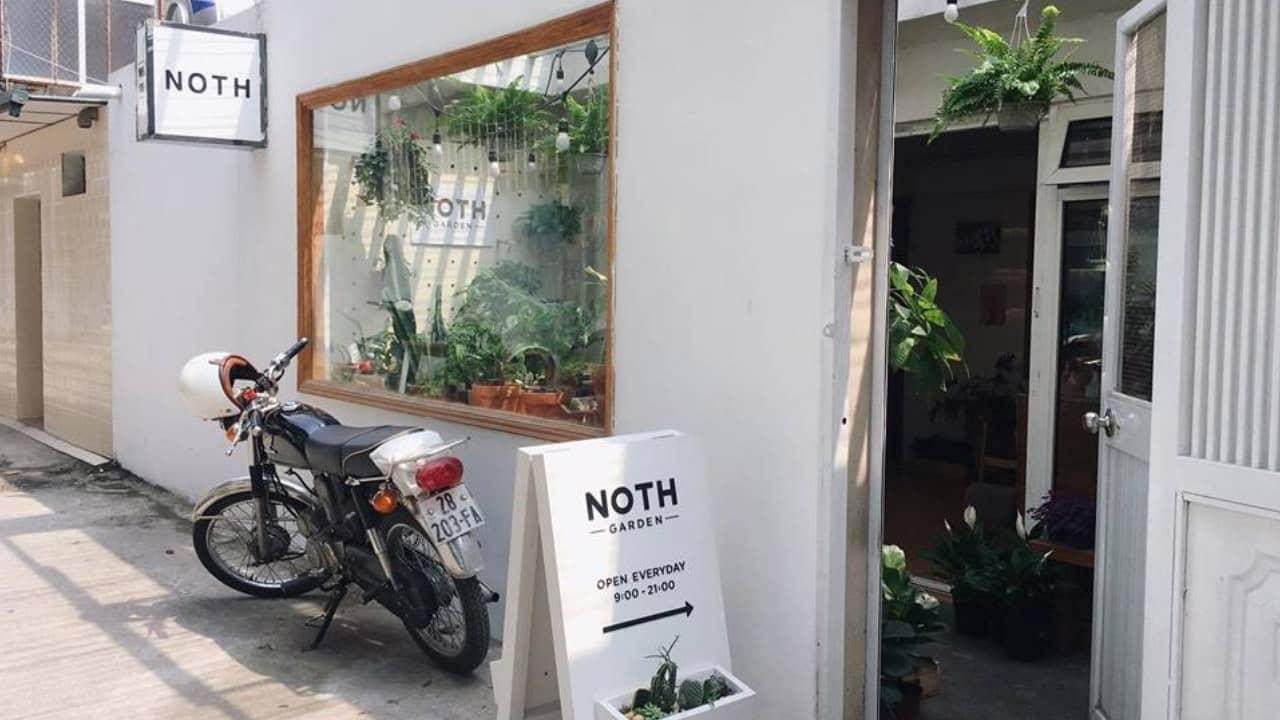 Cửa hàng bán cây xanh Noth